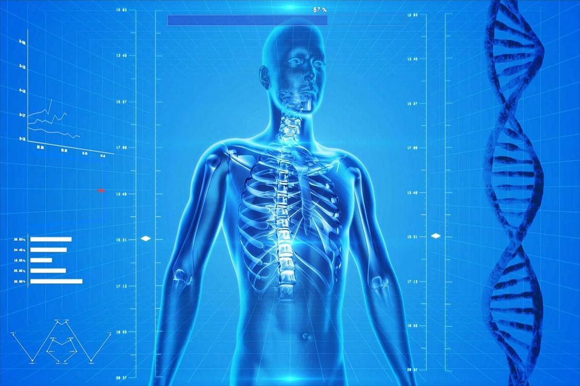 Evidências científicas da Quiropraxia